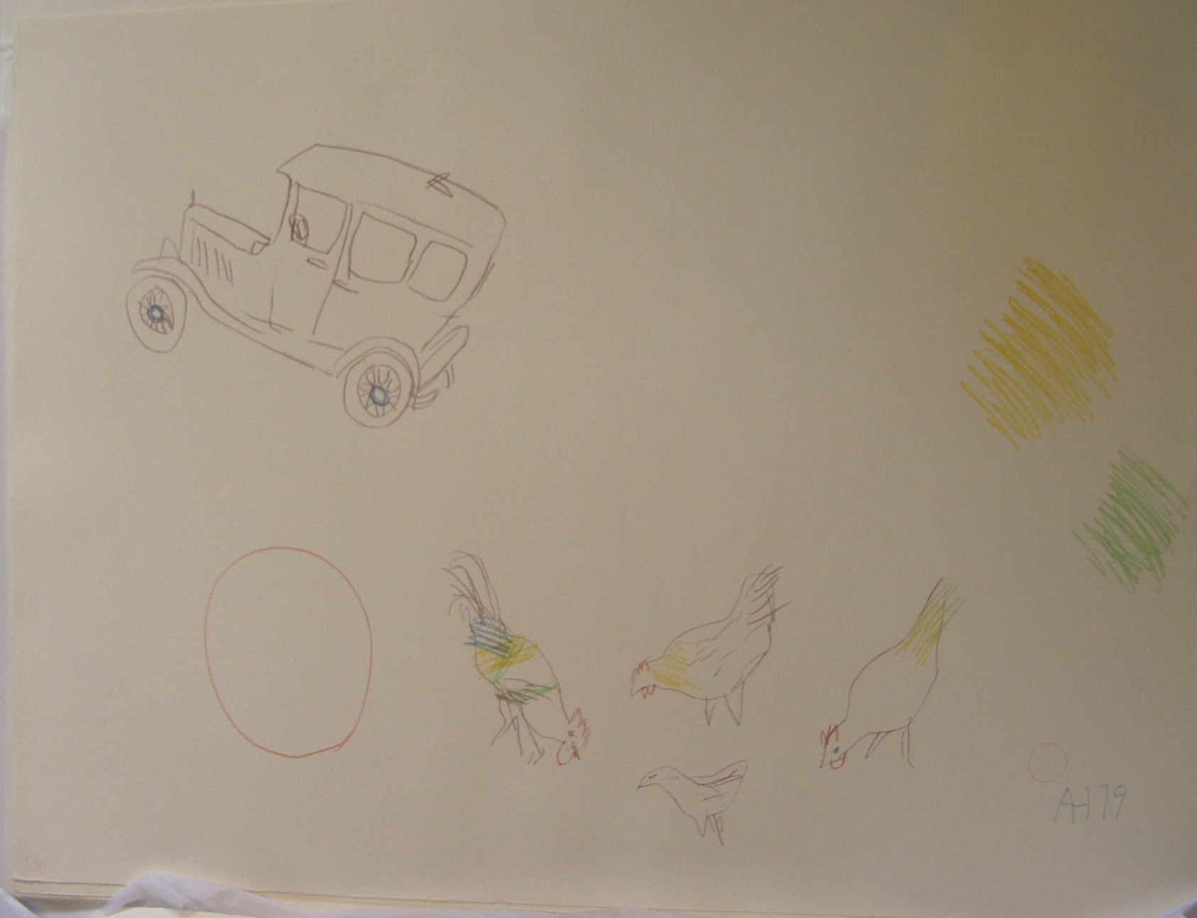 Car & Chickens