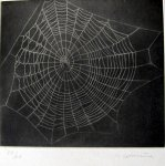 Untitled (Spider Web #1) - click to enlarge