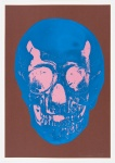 Milk Chocolate Brown True Blue Bubblegum Pink Skull - click to enlarge
