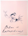 Believe In Extraordinary - click to enlarge